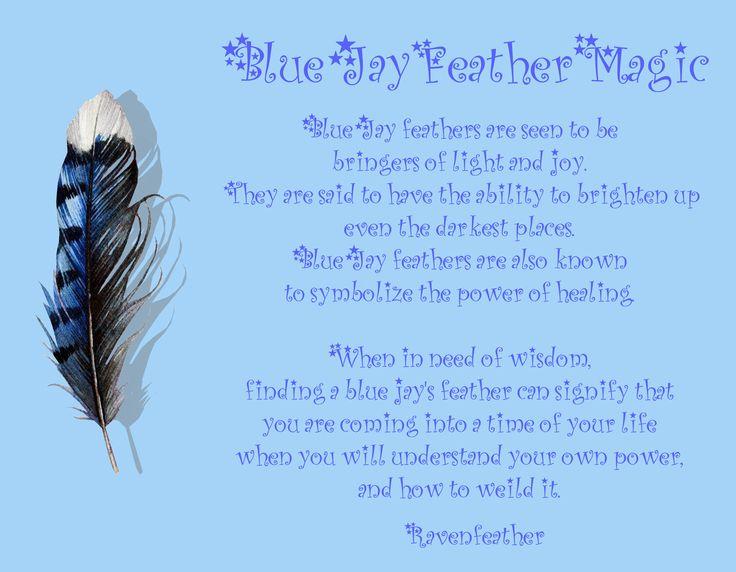 I Found The Blue Jay Feather Kurhel